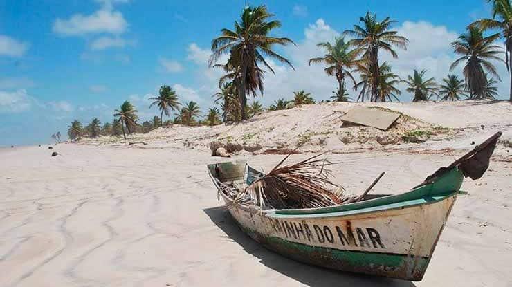 Passeio pelo Mangue Seco e dunas de areia em Salvador